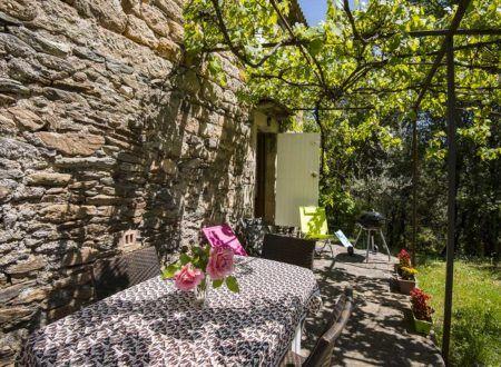 Gîte Le Mazet du Boissin - Terrasse