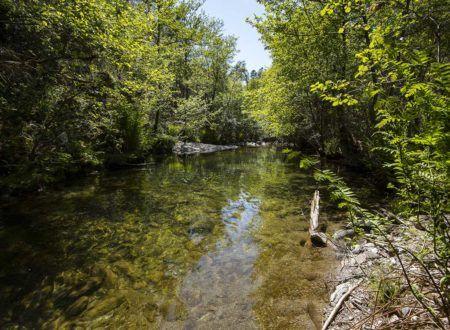 Gîte Le Mazet du Boissin - Baignade en rivière